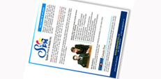 promotional sheets - business proposals